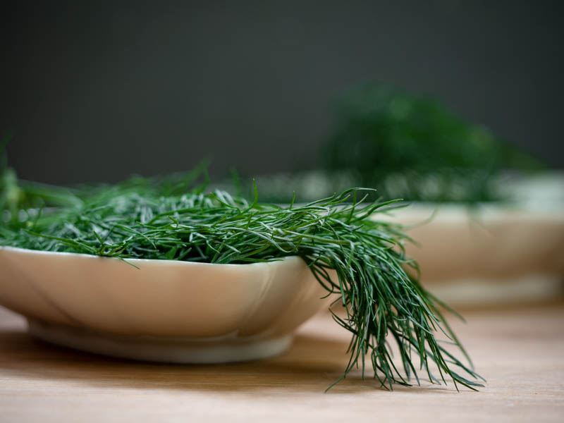 How to Chop Dill - Step 1 image. inthekitch.net