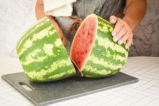 A woman slicing a knife into a large watermelon.