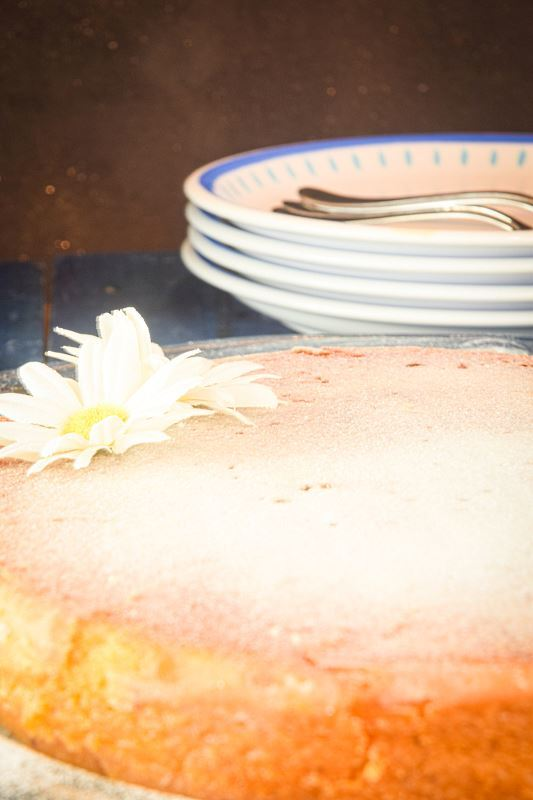 Electric skillet yogurt cake, dusted in icing sugar, 2 white flowers on top, bowls in the background.