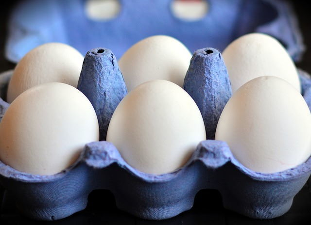White eggs in a blue carton.