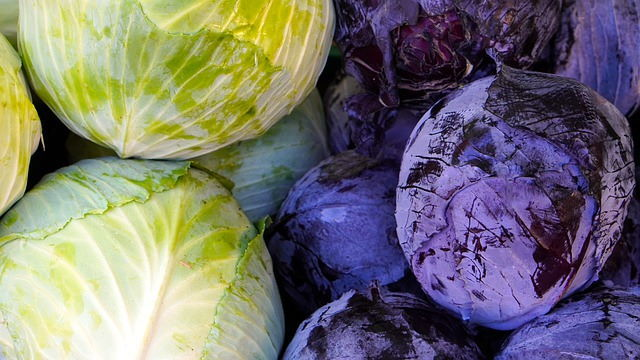 Red and green cabbages.