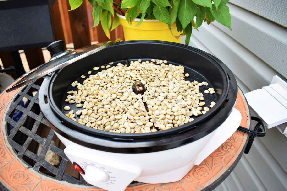 Coffee roaster with raw green coffee beans.